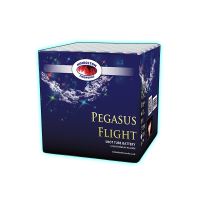 Pegasus Flight  - Kimbolton Fireworks
